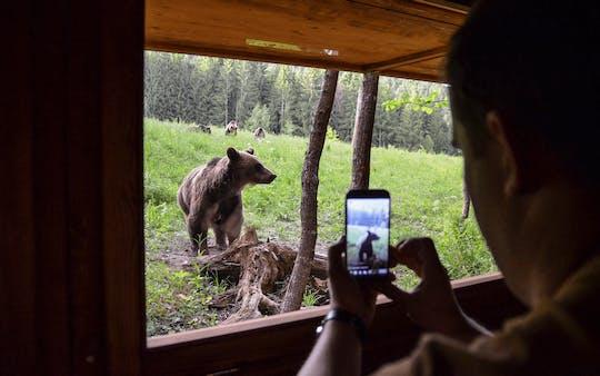 Dagtocht en beren kijken in het land van de vulkanen