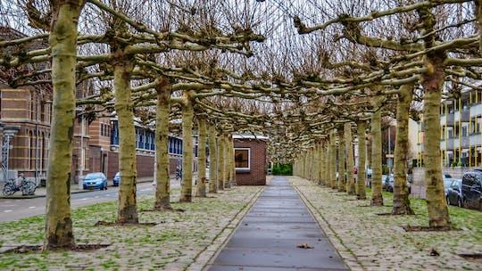Discovery Walk autoguiado en los secretos multiculturales del este de Ámsterdam