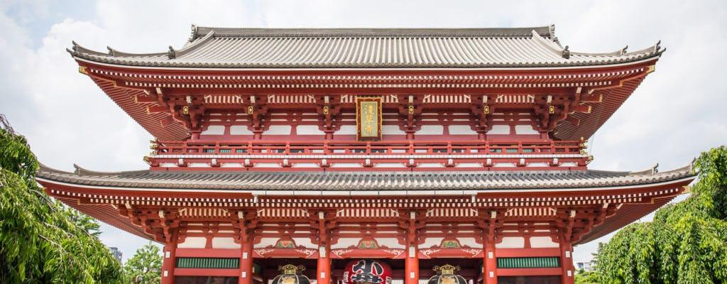 Aspectos destacados del tour privado de Tokio