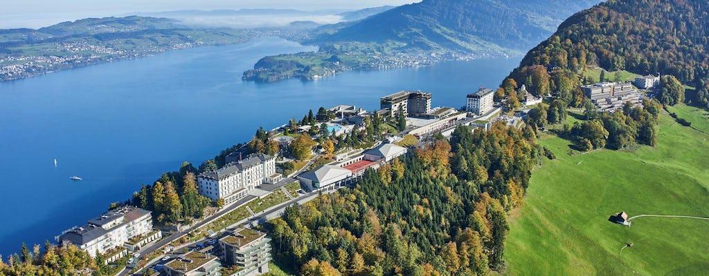 Excursão de 1 dia a Lucerna e Bürgenstock de Zurique