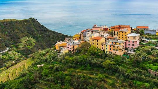 Mountain bike tour over Cinque Terre and the gulf of La Spezia