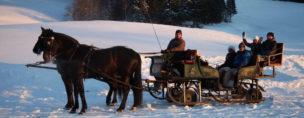 Gita di un giorno nelle Alpi con giro in slitta trainata da cavalli da Salisburgo