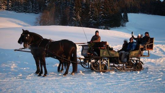 Excursión de un día en los Alpes con un paseo en trineo tirado por caballos desde Salzburgo