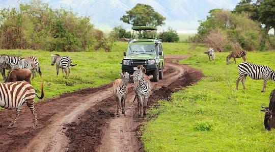 Jednodniowa wycieczka po Parku Narodowym Arusha