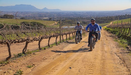 Kapstadt: Winelands E-Bike-Tour