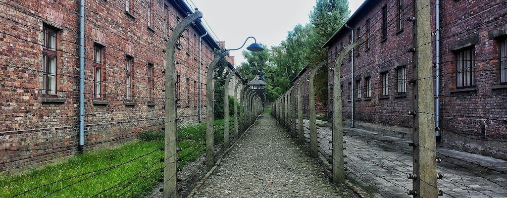 Tour guidato privato di Auschwitz e Cracovia nella città vecchia da Varsavia