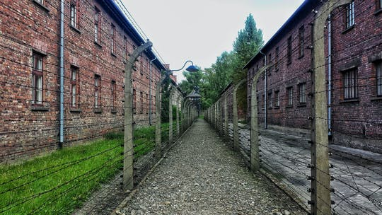 Visita guiada privada a Auschwitz y al casco antiguo de Cracovia desde Varsovia