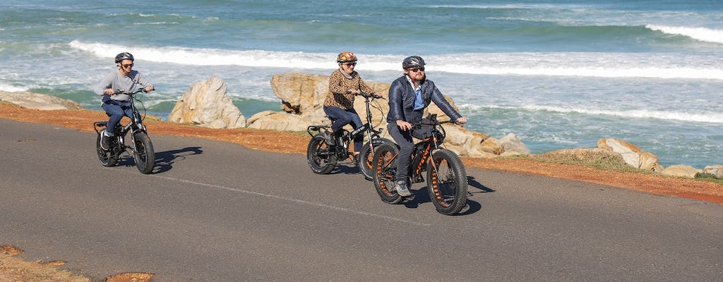 Kaapstad: e-bike Cape Peninsula-tour