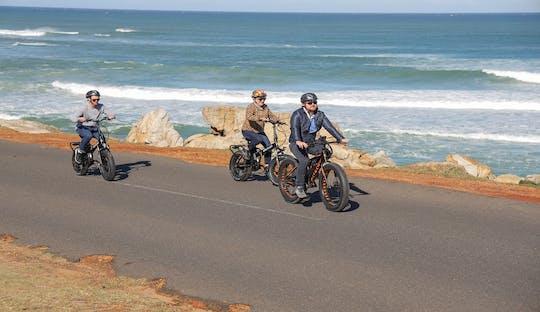 Città del Capo: tour in e-bike della penisola del Capo