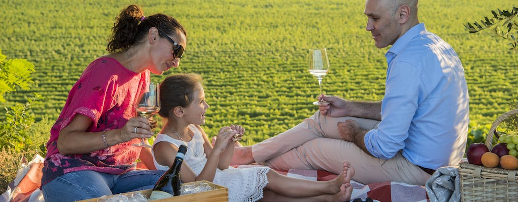 Picnic in the hills and visit to Monte Del Fra' winery