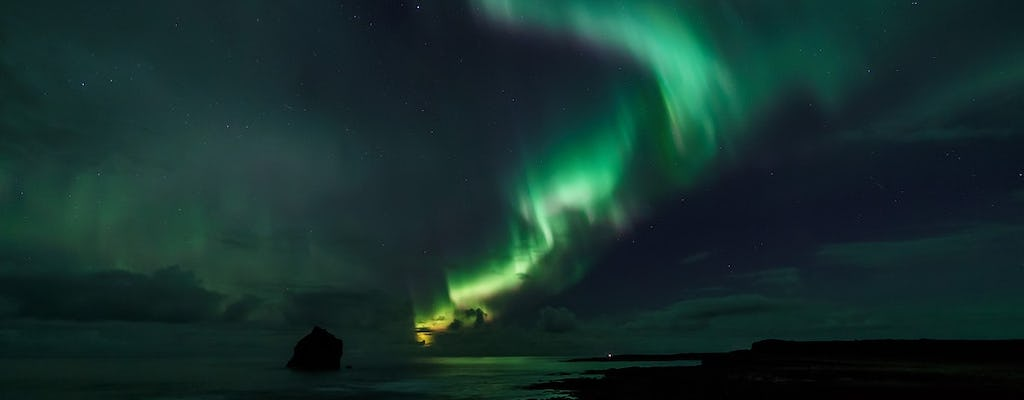 Whale watching and northern lights combo tour from Reykjavik