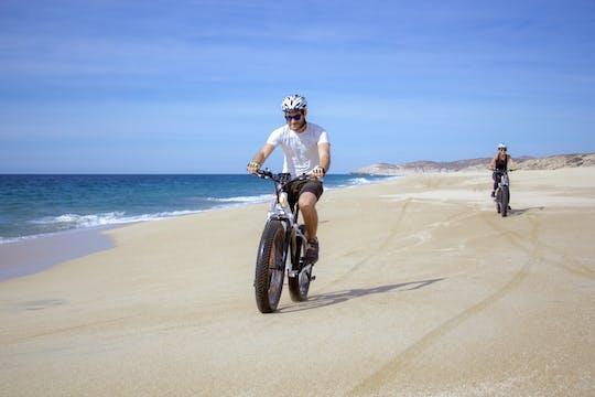 Baja Desert and Beach e-bike Tour