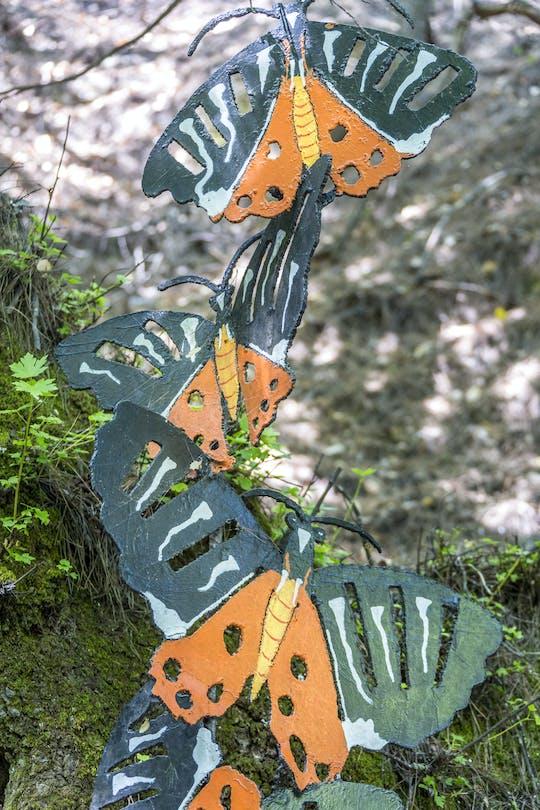 Papillons et l'île de Chalki