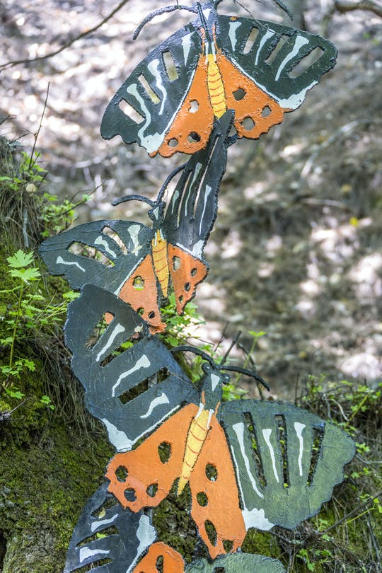Butterflies and Chalki Island