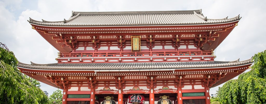 Family fun guided day tour of Tokyo