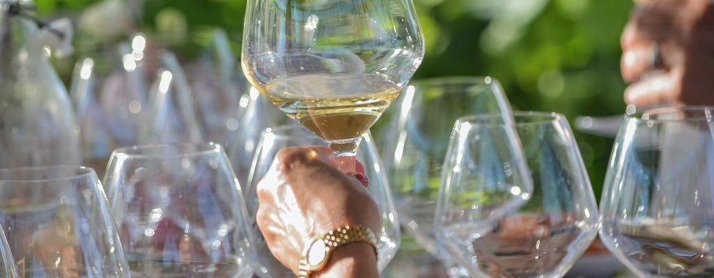 Degustazione verticale di vini con antipasti toscani
