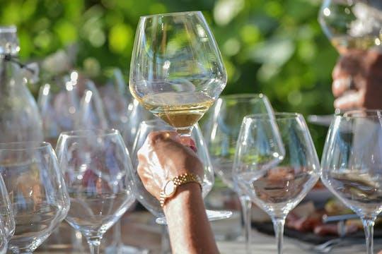 Degustação vertical de vinhos e aperitivos no Tenuta Torciano
