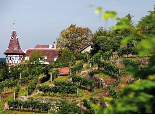 Stäffeles Tour durch den Stuttgarter Süden