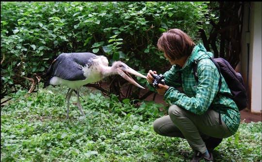 Visite du centre de réhabilitation de la faune de la ferme Makoa depuis le Kilimandjaro