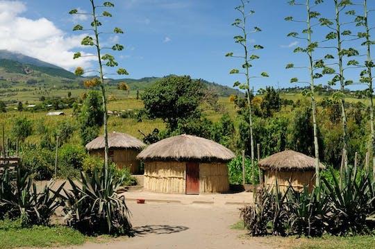 НГ село'iresi визит Килиманджаро