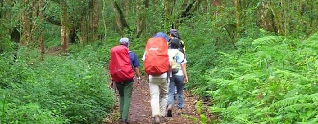 Tageswanderung am Kilimandscharo