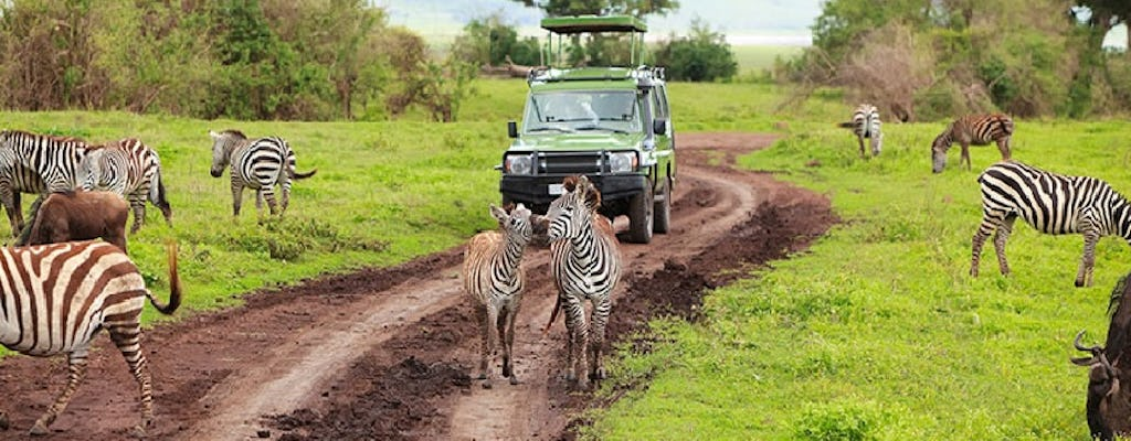 Arusha National Park day tour by the Kilimanjaro