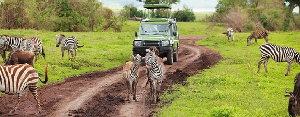 Excursão de um dia ao Parque Nacional de Arusha pelo Kilimanjaro