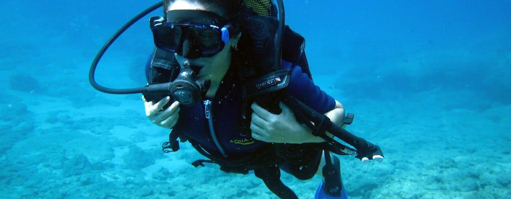 Kusadasi Half-day Scuba Diving from Beach