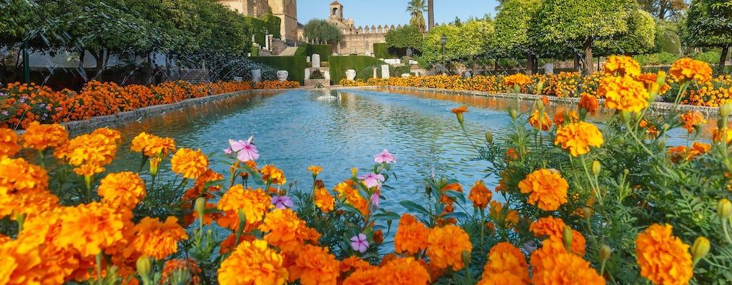 Córdoba cultural visita guiada por el Alcázar, la sinagoga y la judería