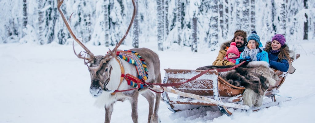 Highlights of Rovaniemi full-day tour A