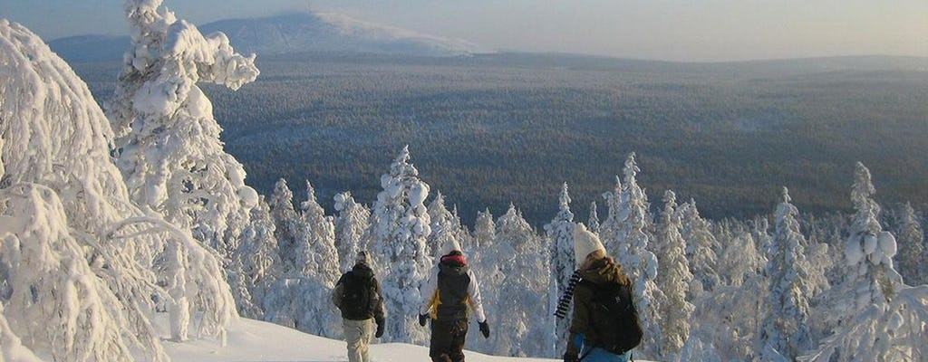 Highlights of Rovaniemi full-day tour B