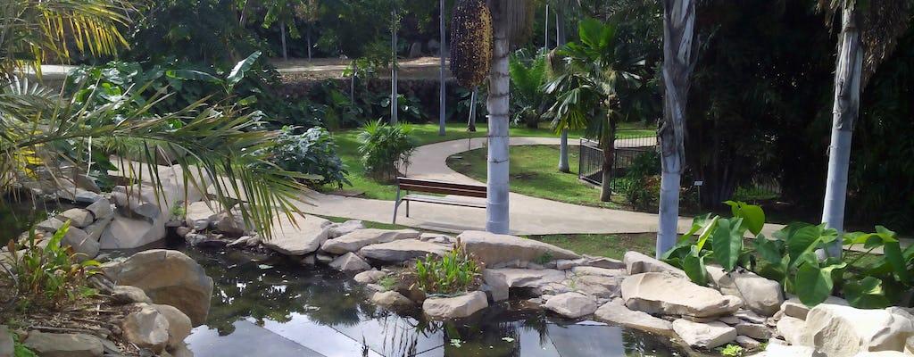 Billet jardin botanique Palmetum