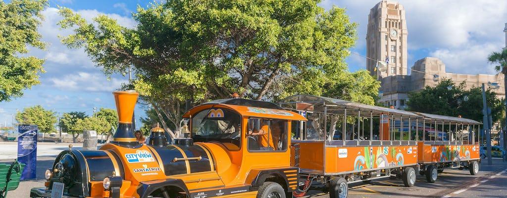 Excursion en bus touristique & petit train