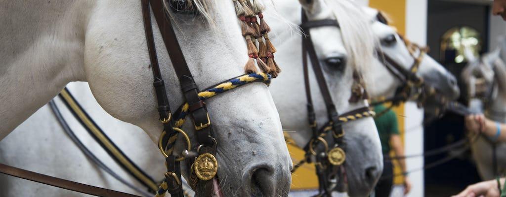 Spectacle de l'école royale andalouse d'art équestre - Billet d'entrée