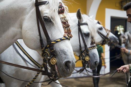 Pferde-Dressur-Show der Königlich-Andalusischen Reitschule