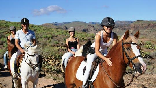 Konna przejażdżka w Salobre na Gran Canarii
