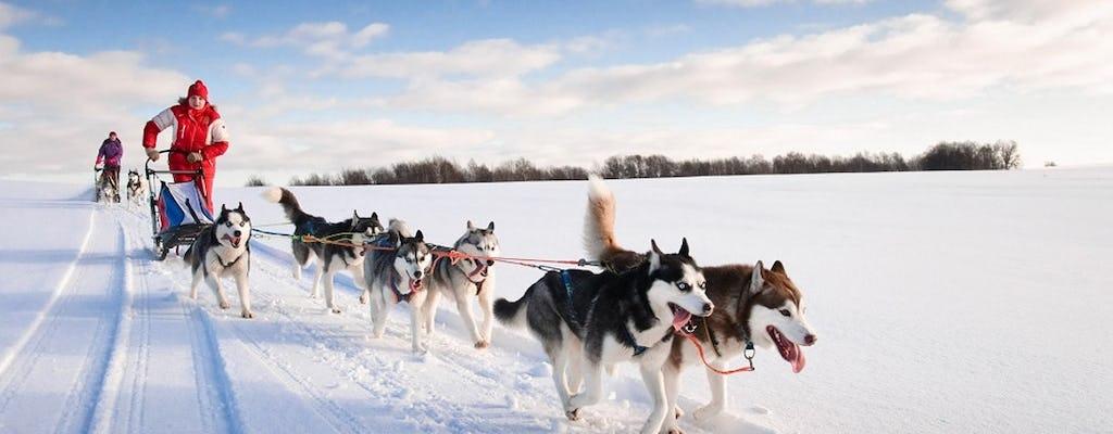 Aventura de paseo en trineo Husky de 20 km