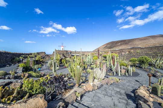 Lanzarote Coast to Coast Tour
