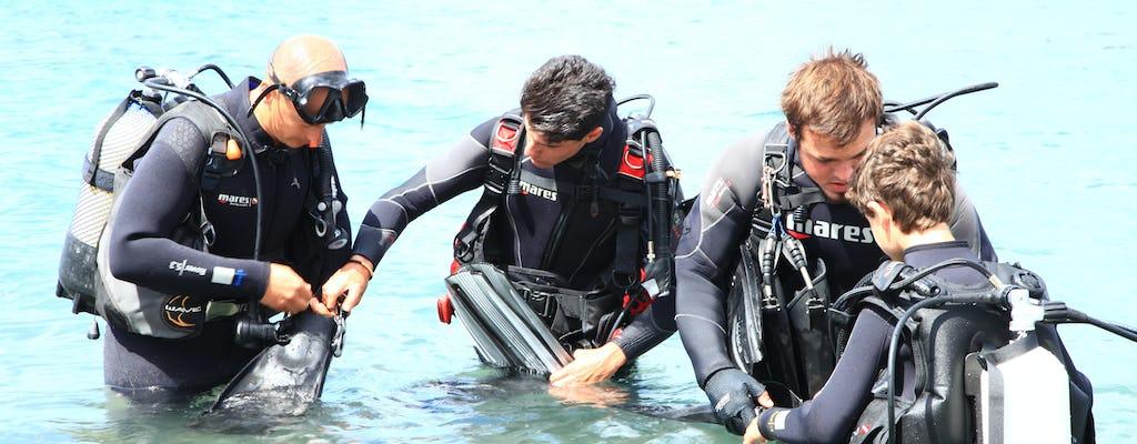 Premières plongées pour débutants