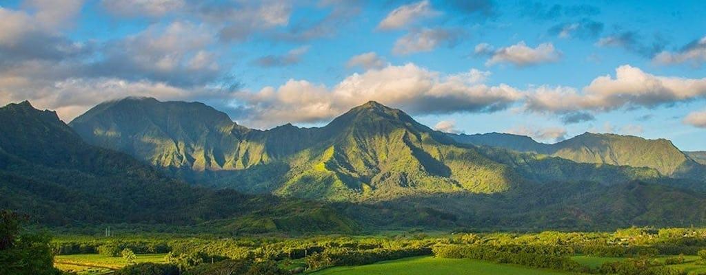 Tour d'aventure cinématographique à Kauai