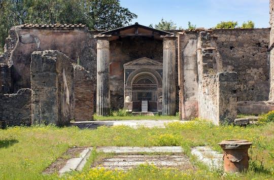 Pompeii Half Day from Amalfi Coast