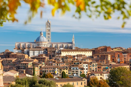 Siena walking tour with optional Cathedral visit