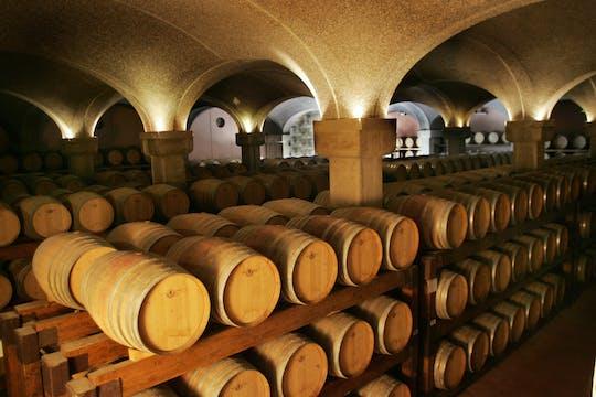 Wycieczka po winnicy i degustacja wina w winnicy Argiolas