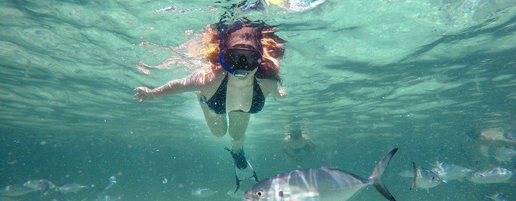 Reef Explorer – Stingrays, Snorkelling & Massage