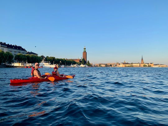 Guided daytime kayak eco-tour in Stockholm-City