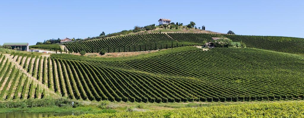 Visita guiada à vinícola Valle Martello com degustação de vinhos