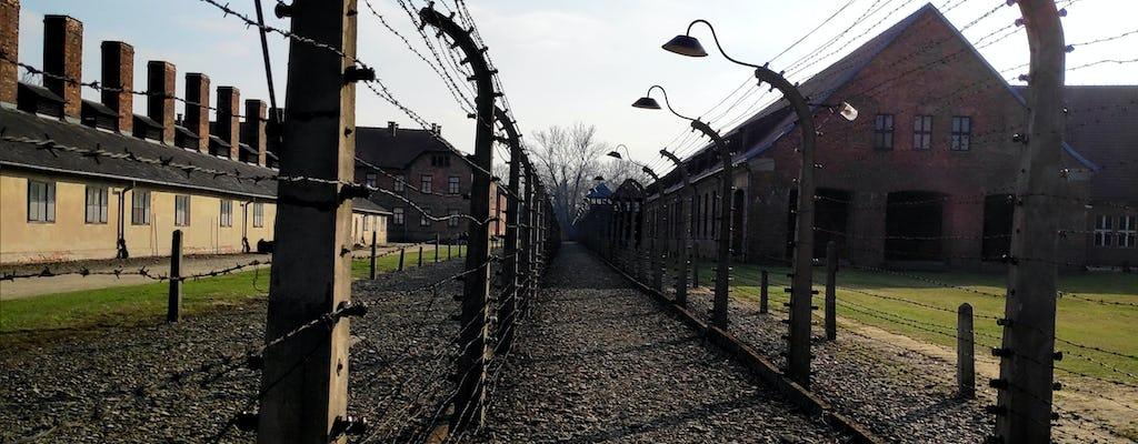 Visita guiada conmemorativa a Auschwitz-Birkenau desde Cracovia