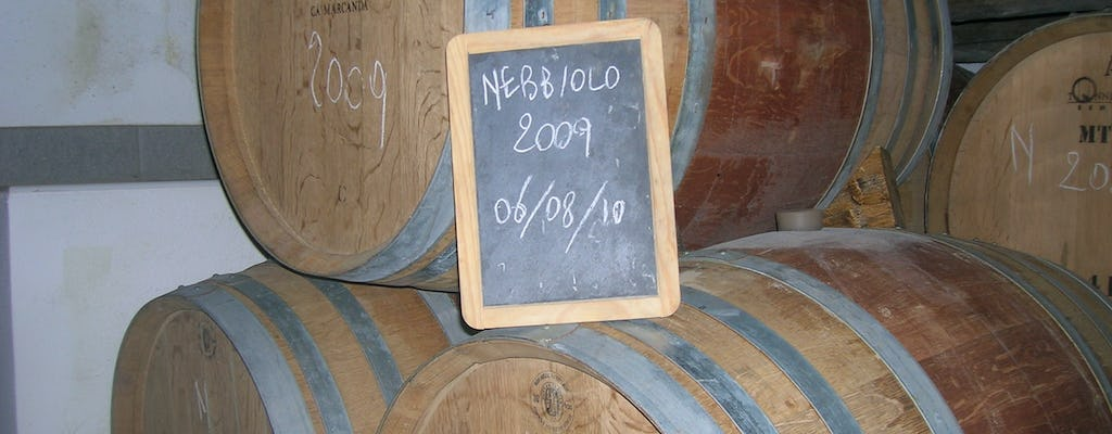 Winery visit and tasting of four DOC Fontechiara wines