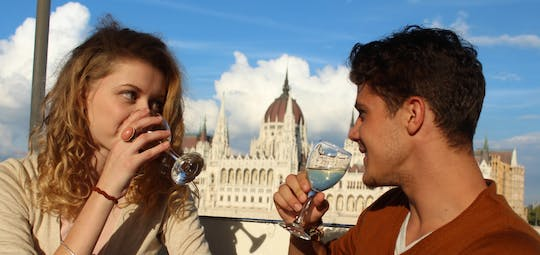 Danube river cruise with drink options