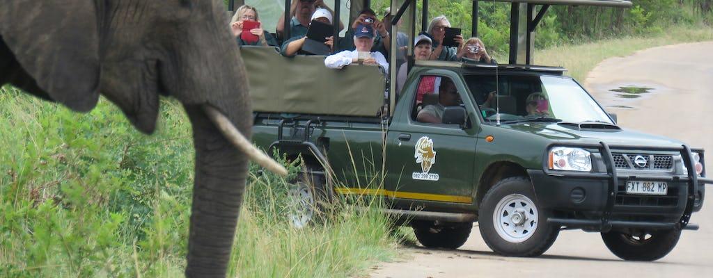 Kruger National Park morning safari